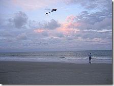 Wikipedia_Man_flying_kite